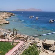 Sinai, Shark's Bay